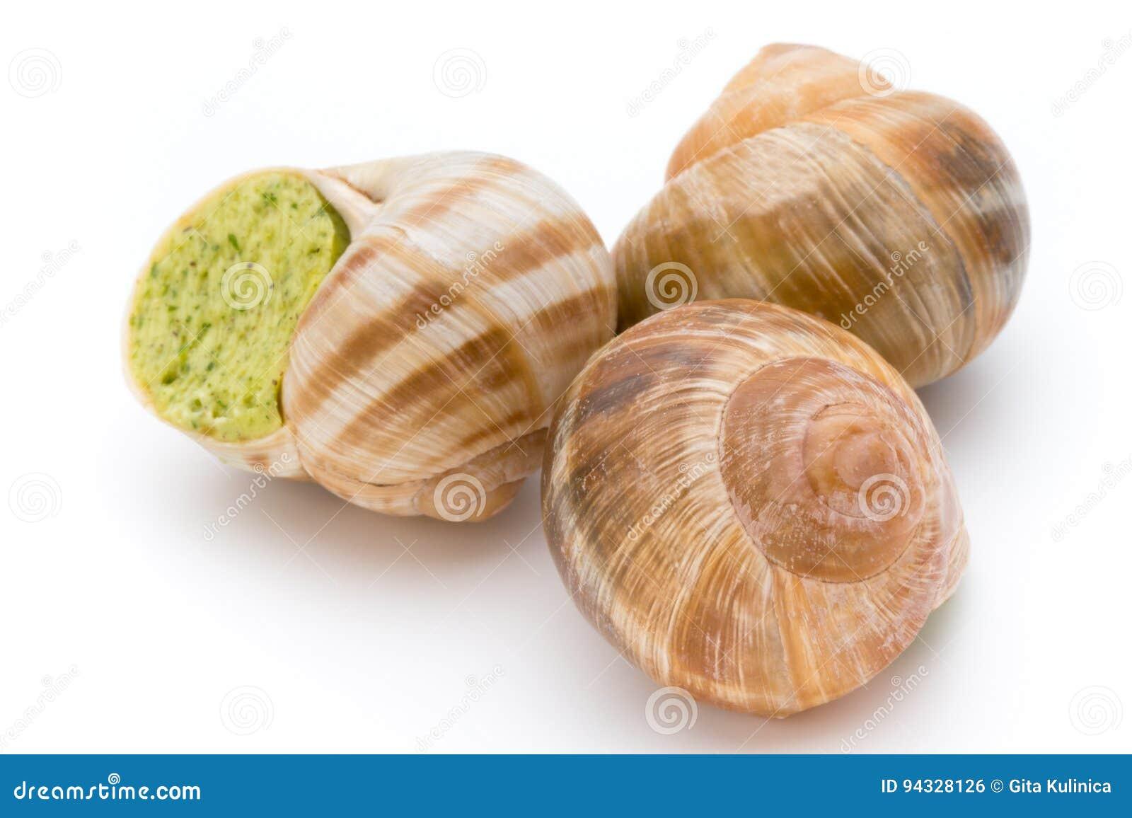 煮熟的蜗牛纤巧 法国烹调被充塞的蜗牛