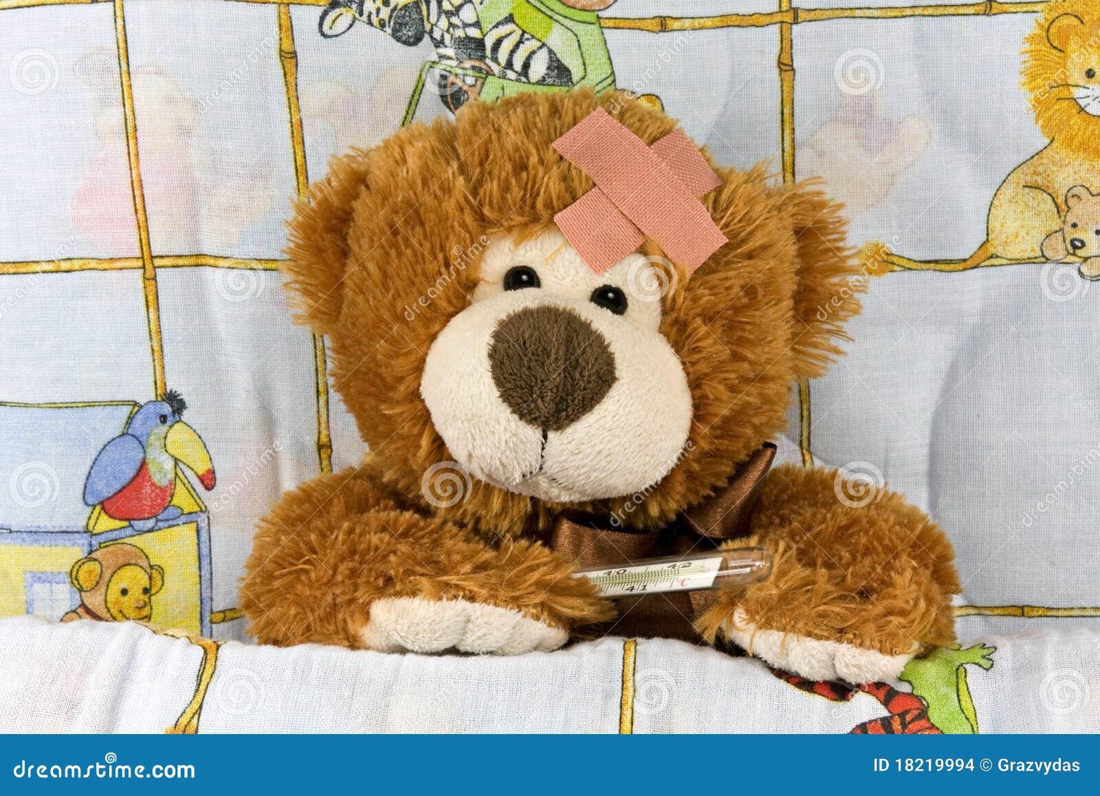 熊棕色不适的女用连杉衬裤