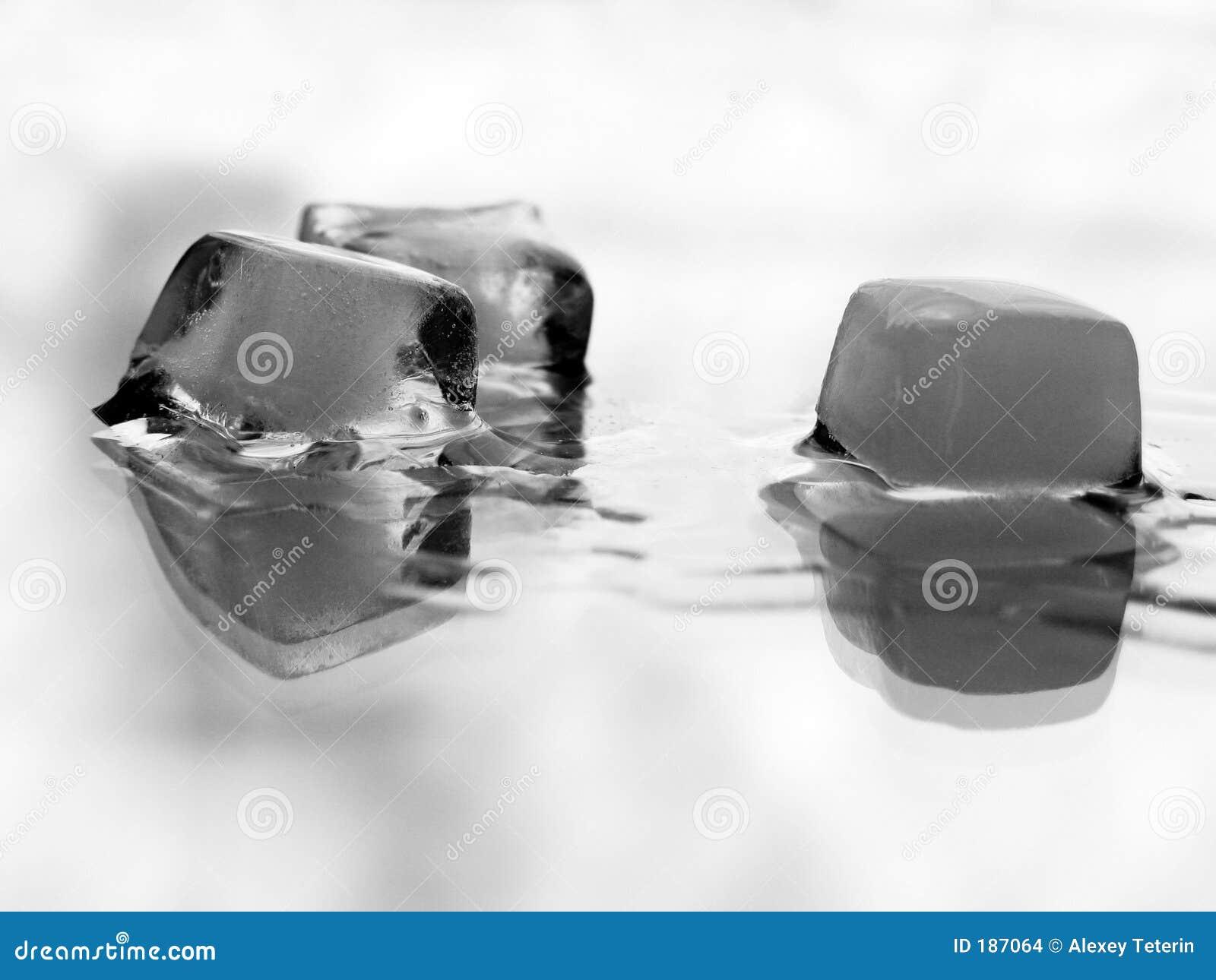 熔化在白色的冰