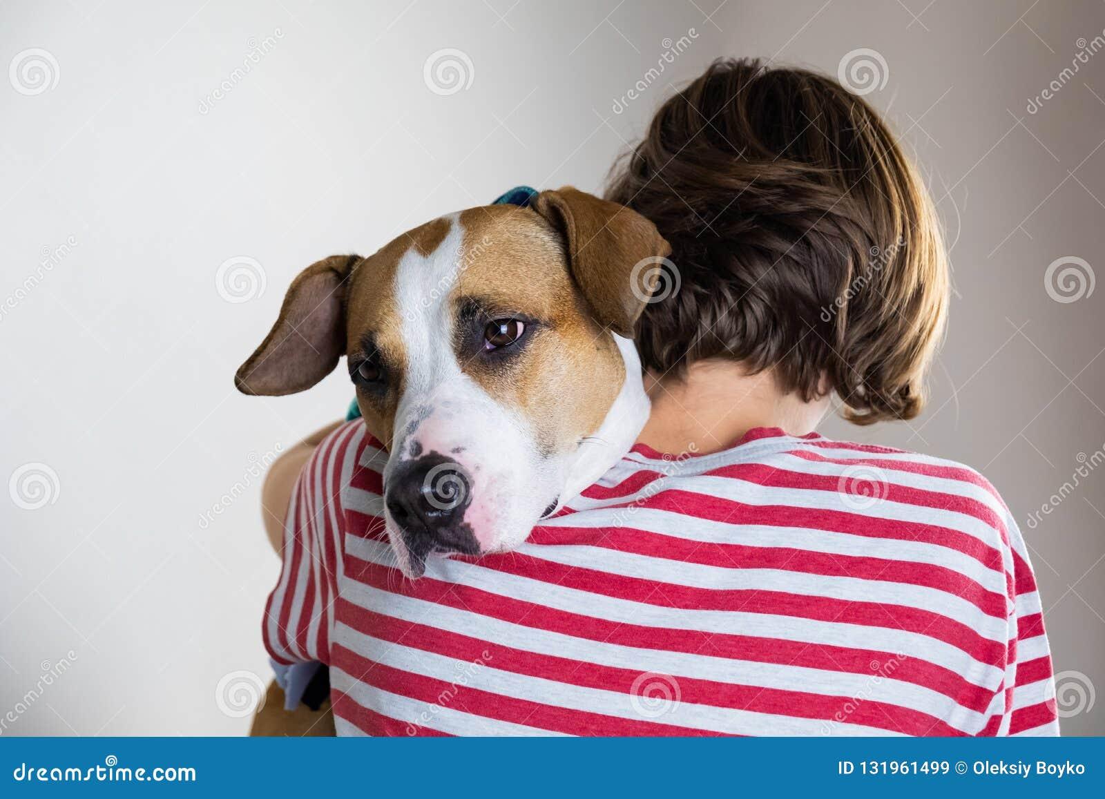 爱和仁慈对动物概念