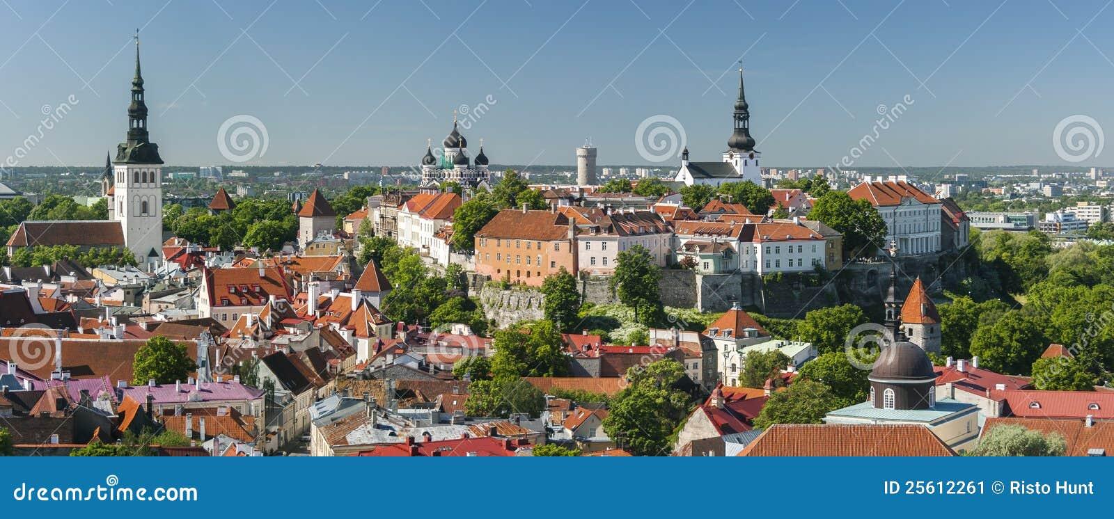 爱沙尼亚老全景夏天塔林城镇