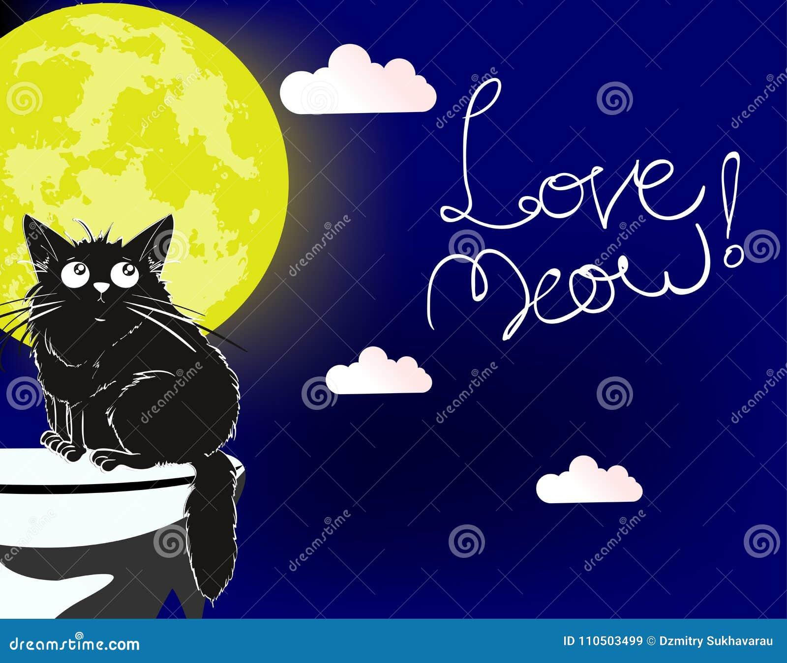 爱猫叫声 一只爱恋的逗人喜爱的猫