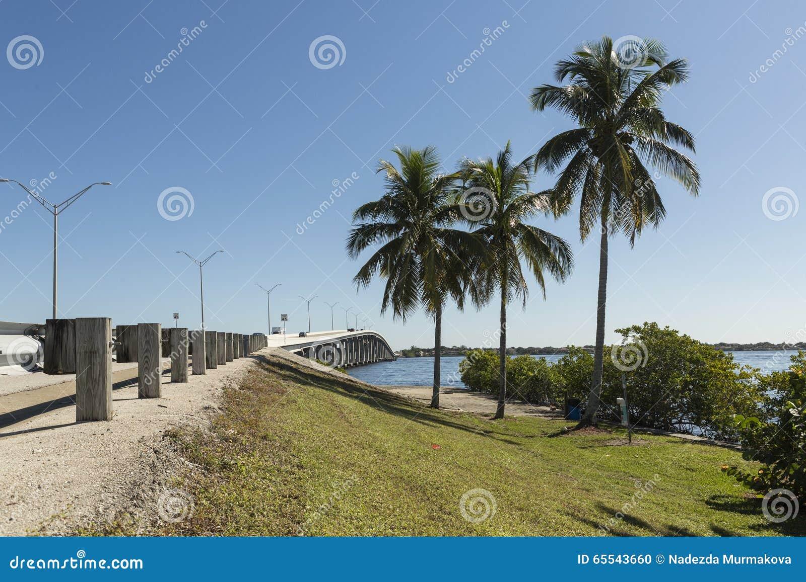 爱迪生桥梁在迈尔斯堡,西南佛罗里达