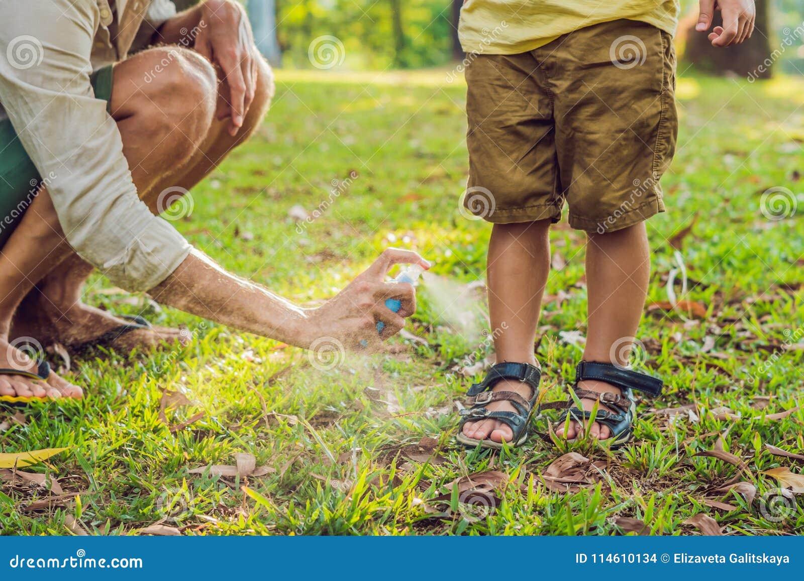 爸爸和儿子用途蚊子浪花 在室外的皮肤的喷洒的杀虫剂