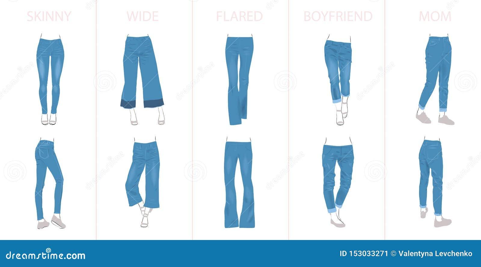 牛仔裤类型的例证