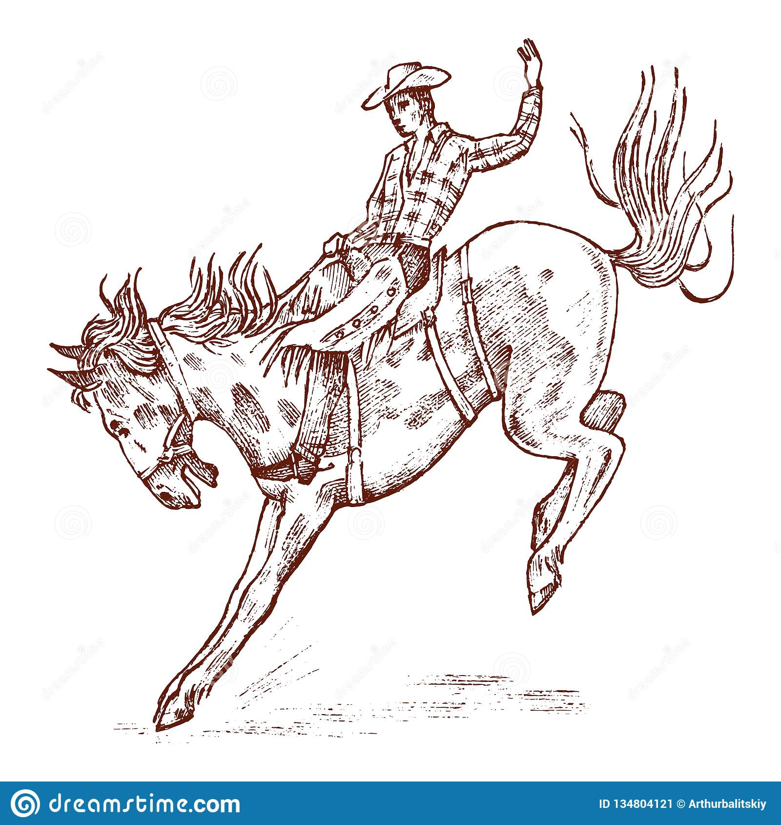 牛仔马骑术系列西方通配 r   E