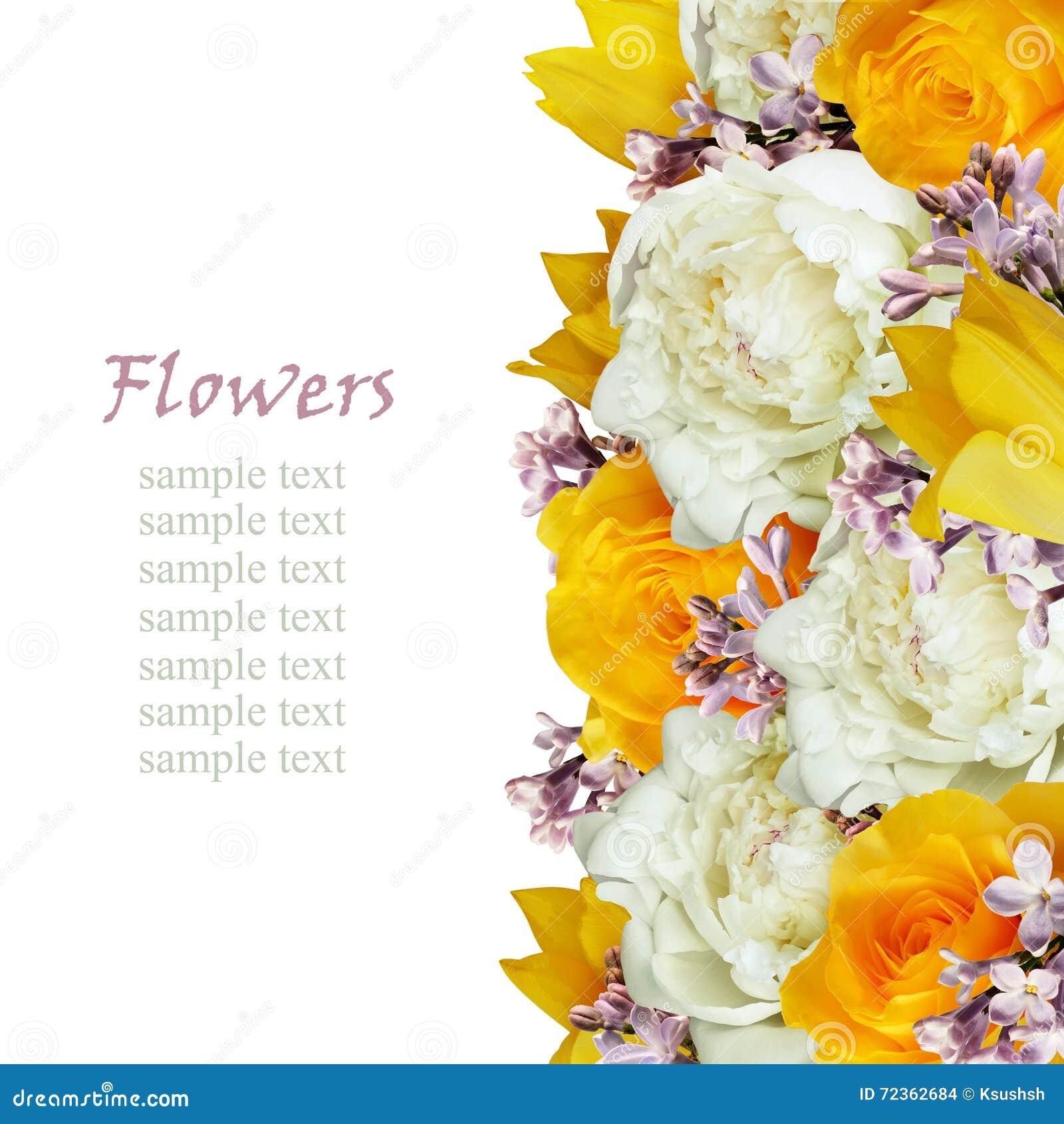 牡丹、郁金香、玫瑰和丁香花渐近
