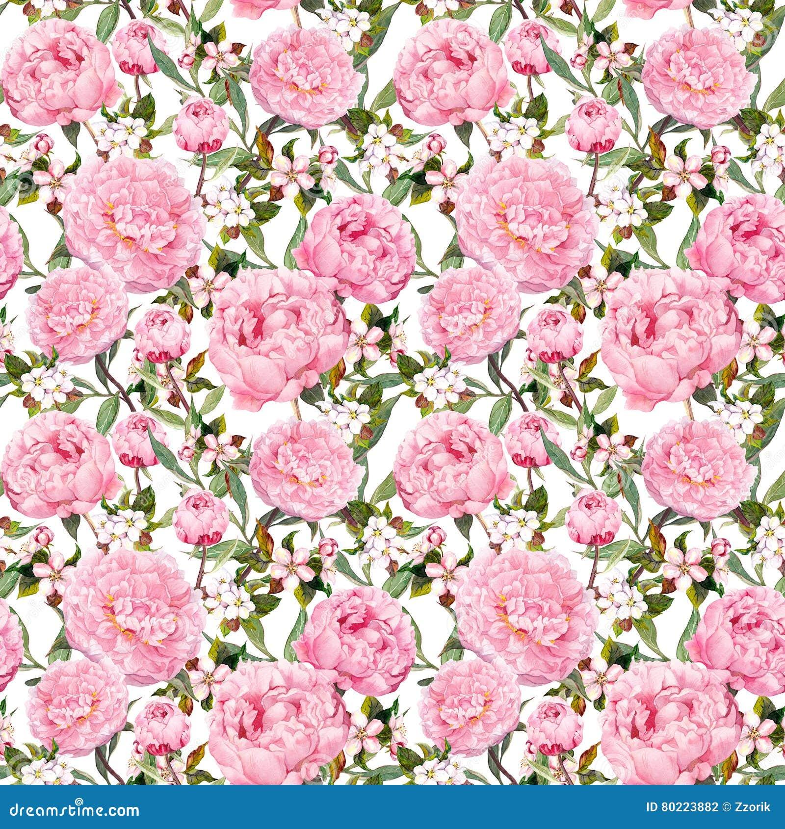 牡丹花,佐仓 重复桃红色花卉背景 水彩
