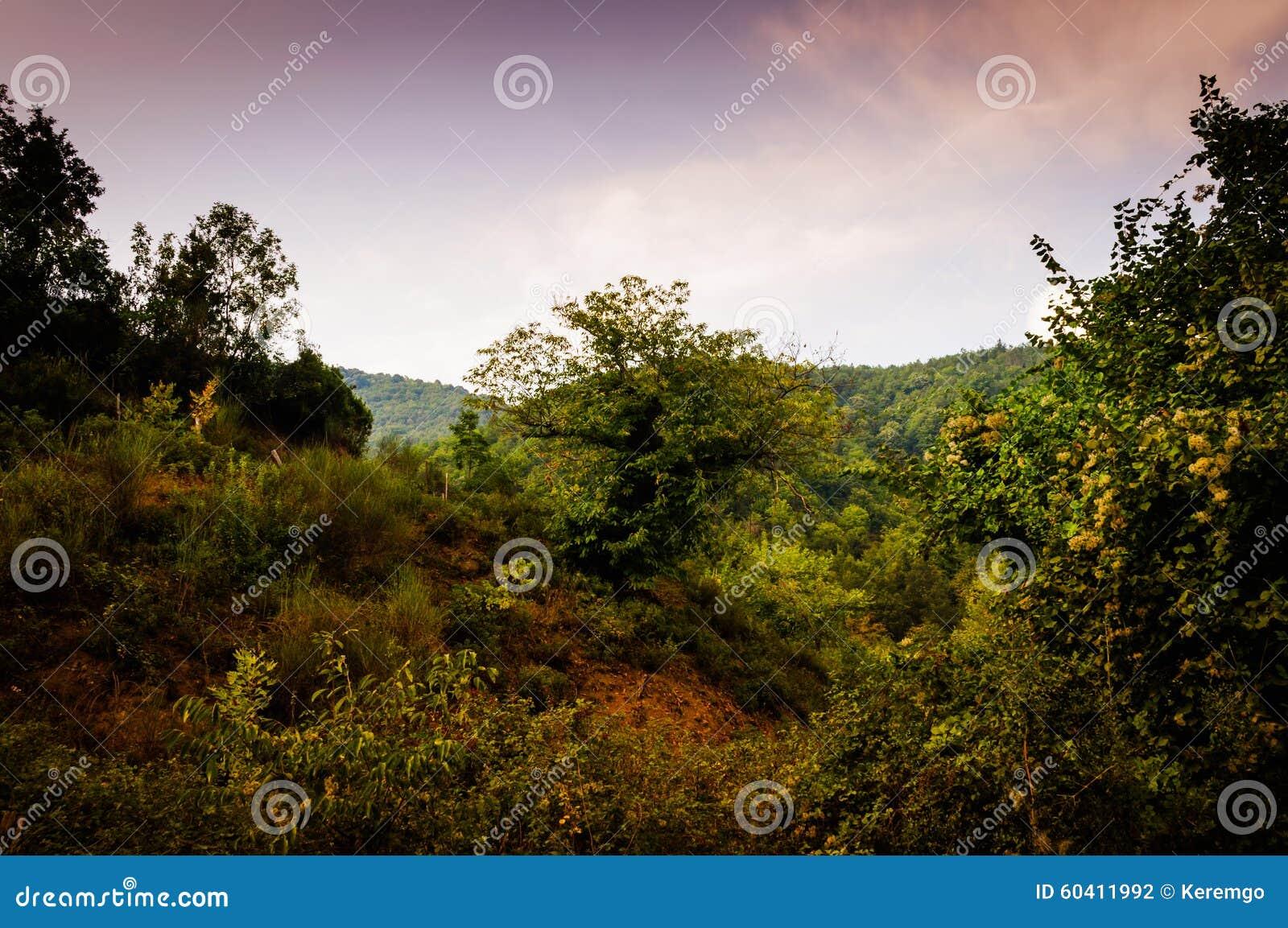 牧人秋天风景