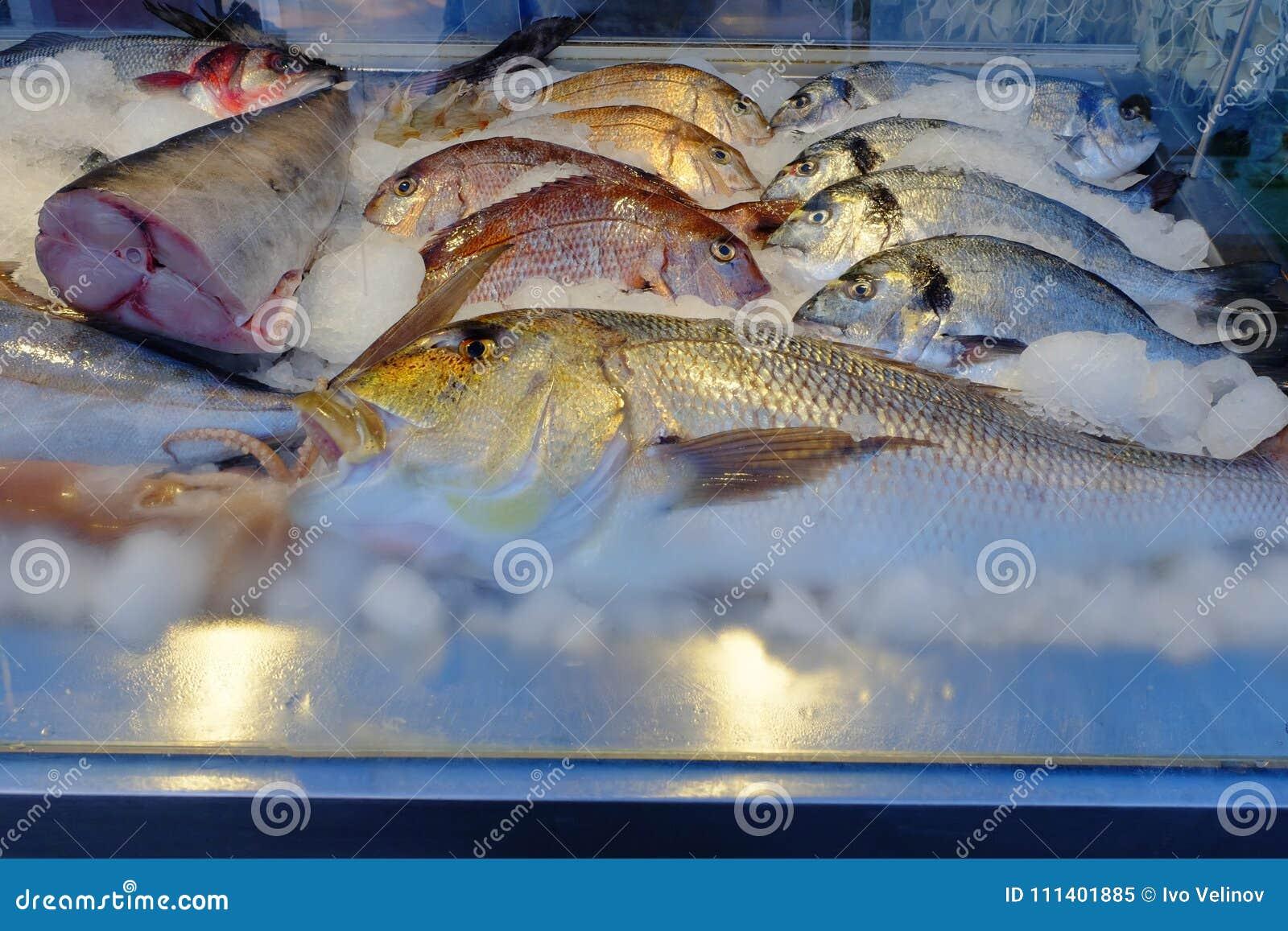 特写镜头观点的新鲜和生鱼