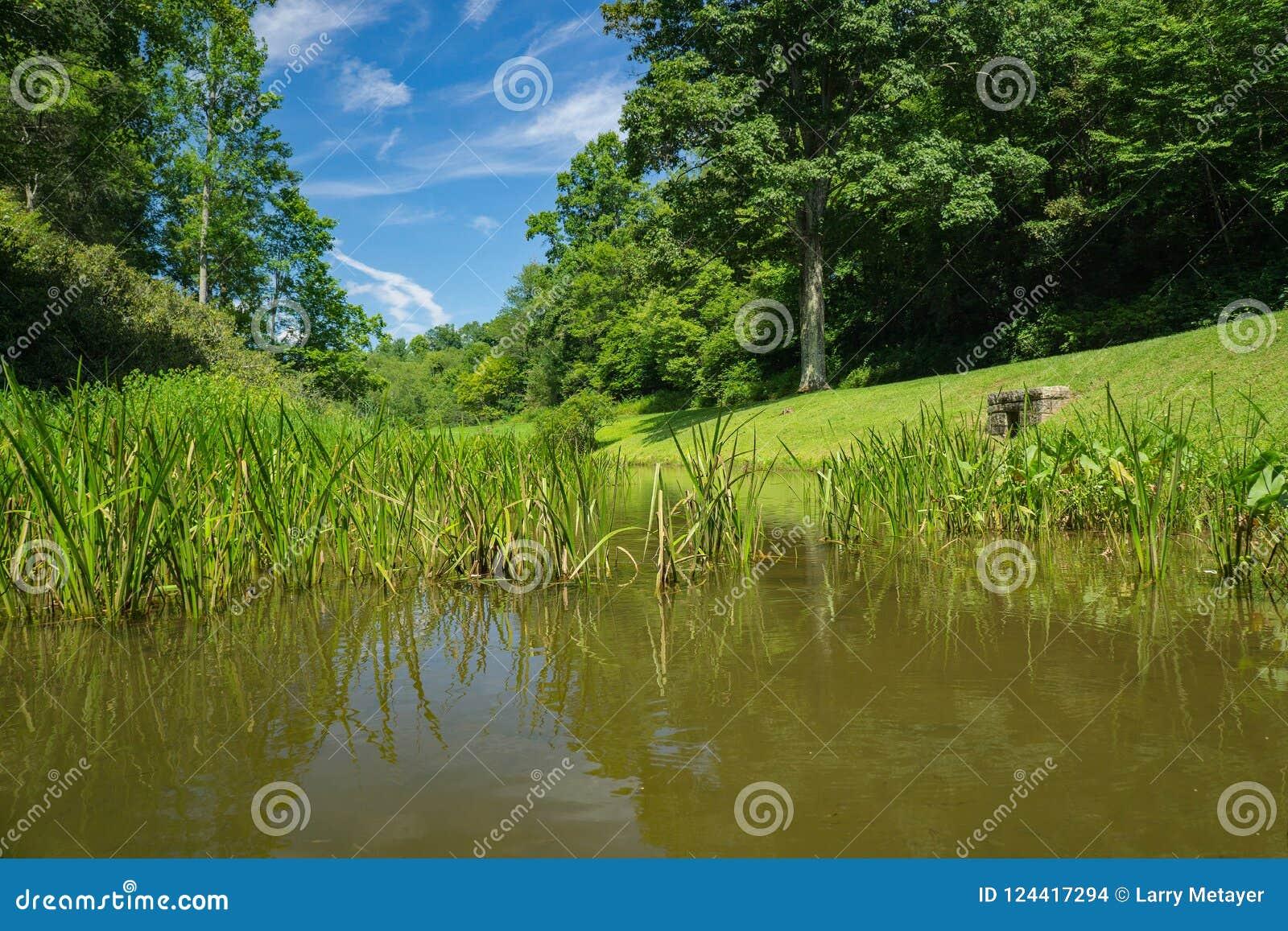 犁耙磨房池塘一个地面看法