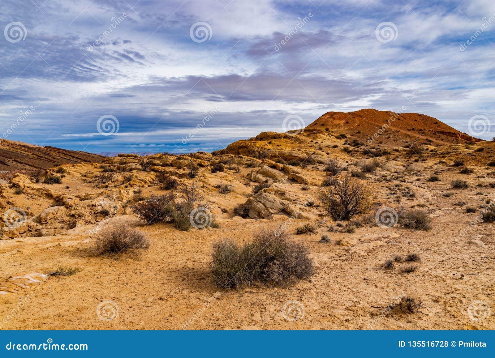 犹他沙漠的沙漠足迹