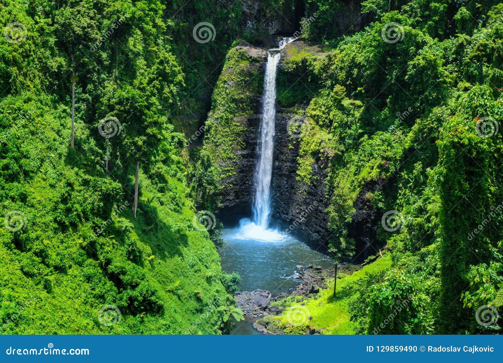 狂放的密林瀑布惊人视图用原始水,Sopo