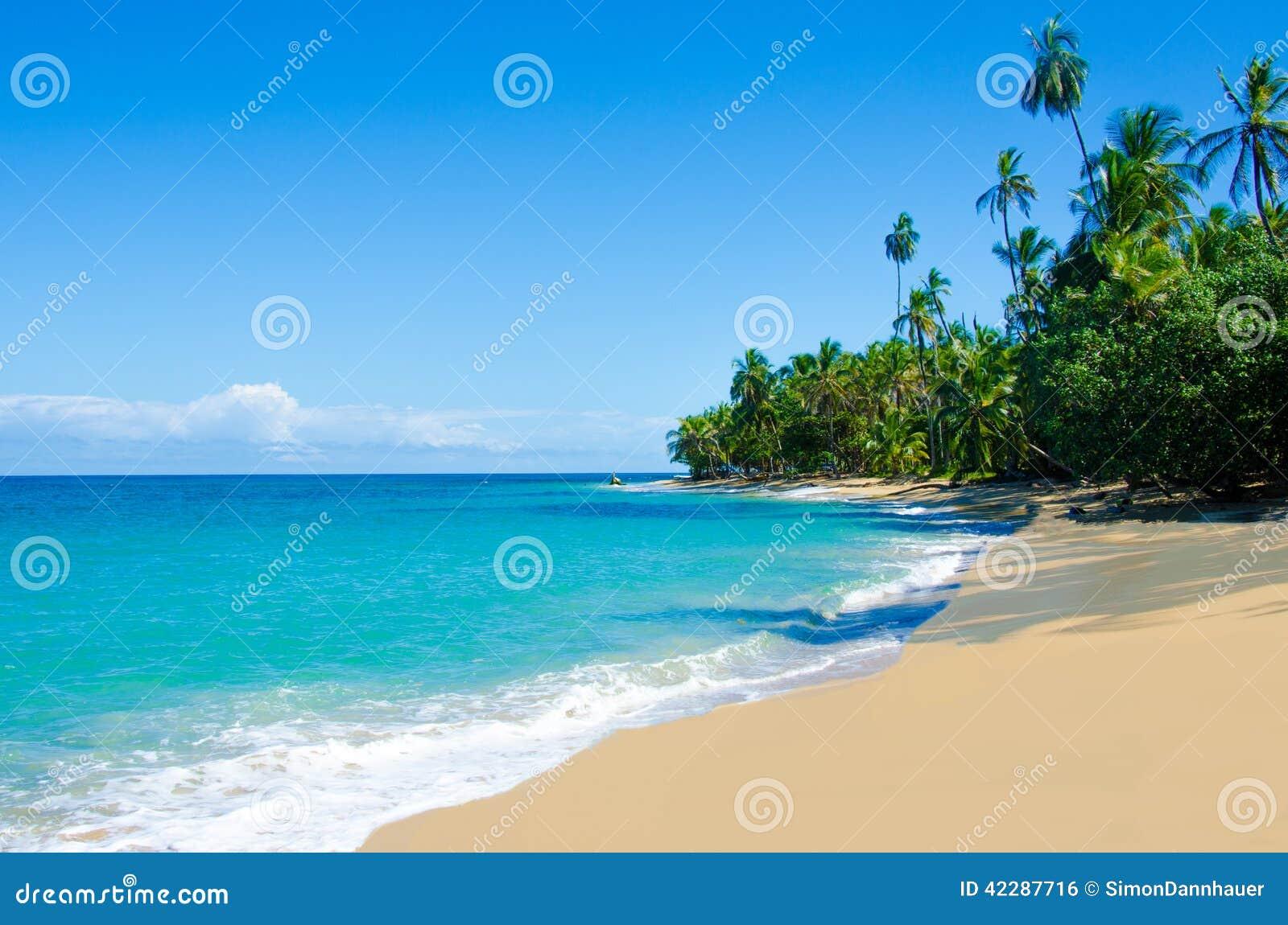 狂放的海滩奇基塔和Cocles在哥斯达黎加
