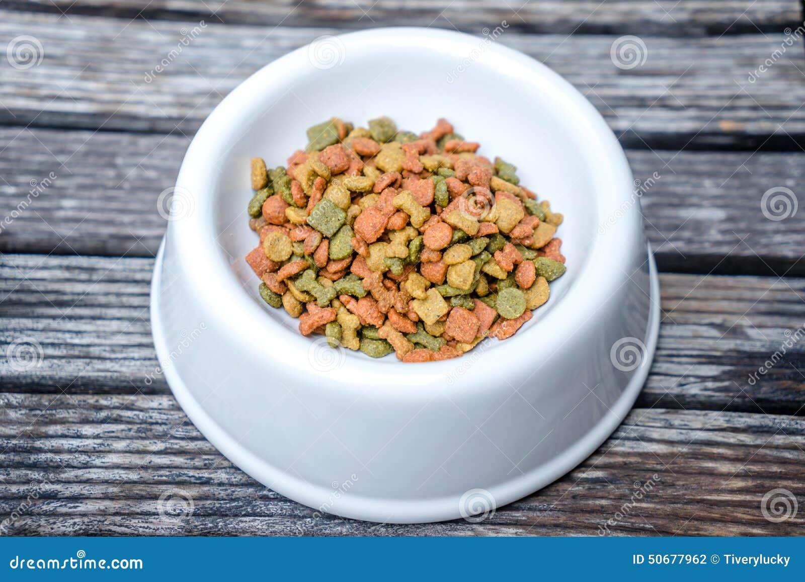 Download 狗吃小的食物希望 库存照片. 图片 包括有 宠物, 小狗, 特写镜头, 宏指令, 干燥, 弯脚的, 食物 - 50677962