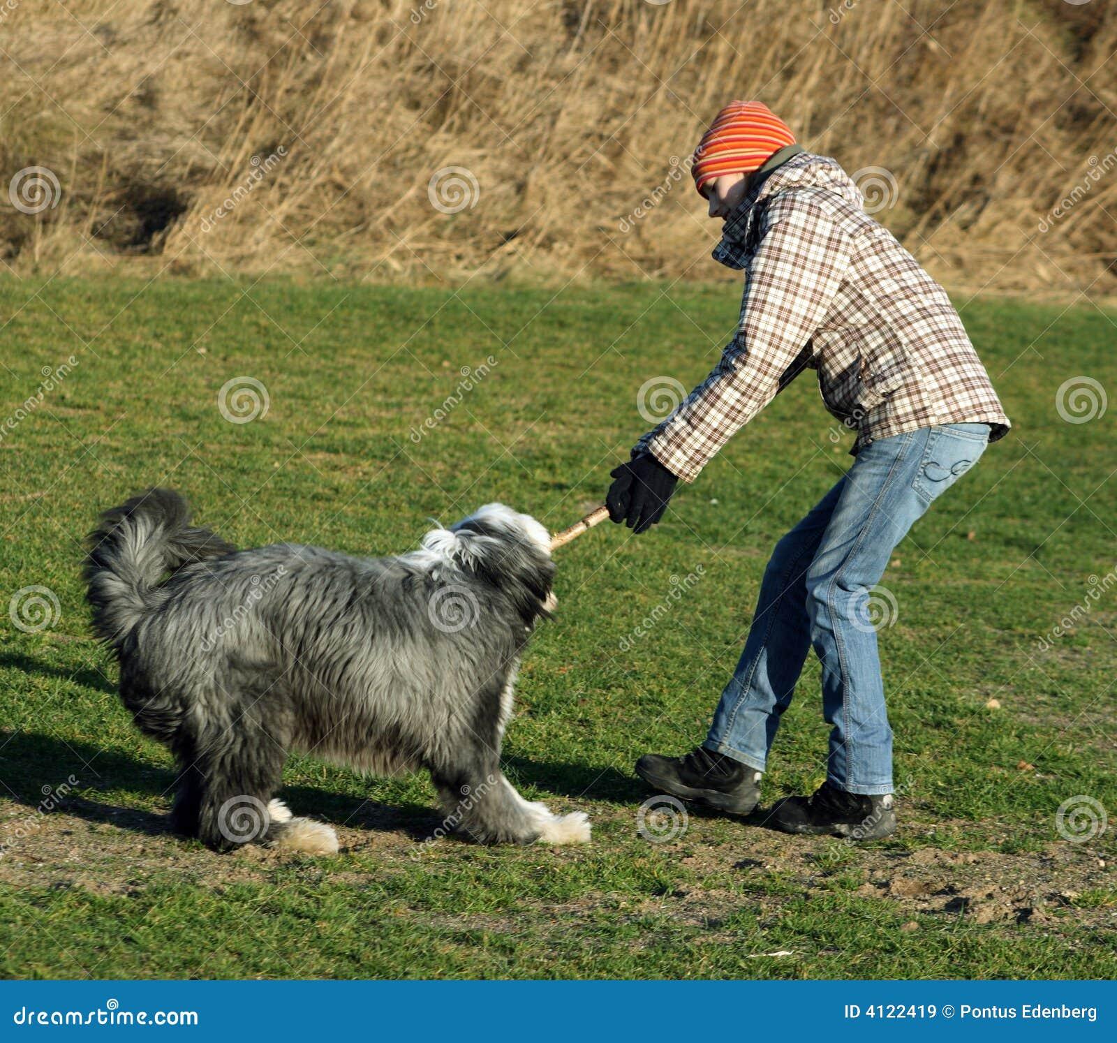 狗在棍子的战斗女孩