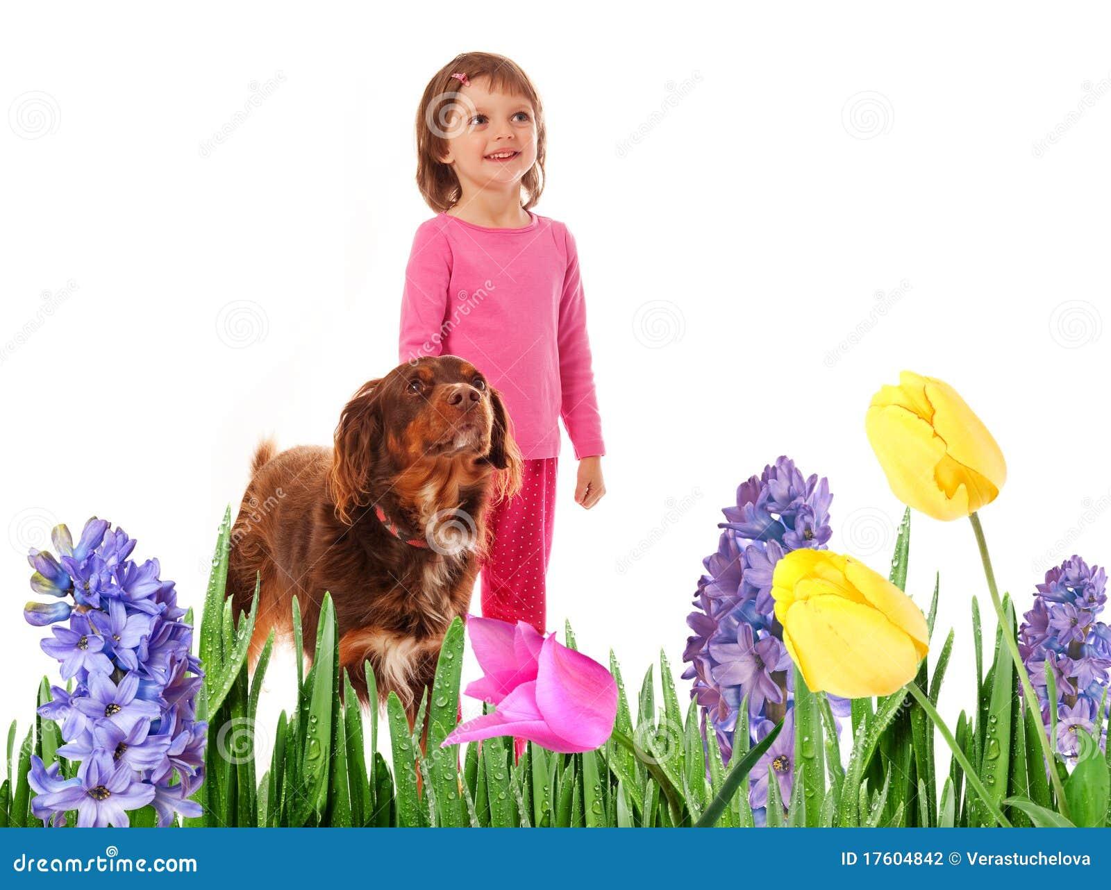狗庭院女孩少许春天