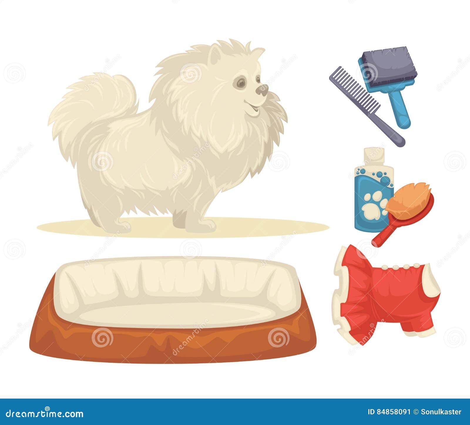 狗被设置狗的辅助部件