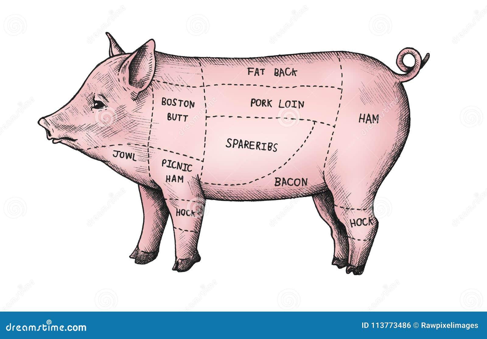 猪手拉的裁减