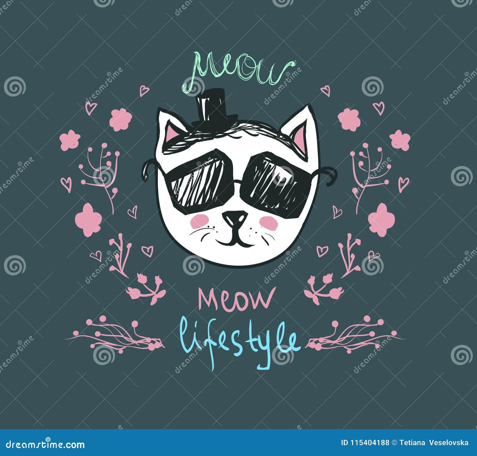 猫叫声生活方式-乱画全部赌注 在太阳镜的逗人喜爱的时尚猫-导航明信片 滑稽的宠物字符 时髦行家skeych
