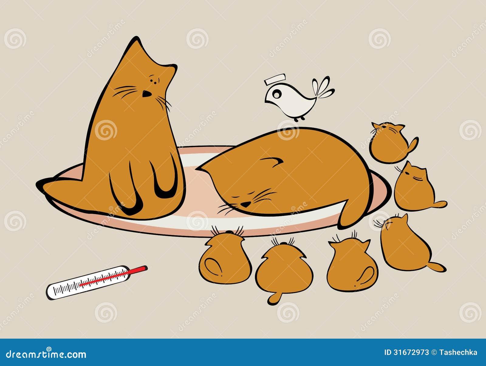 猫家庭与小猫的