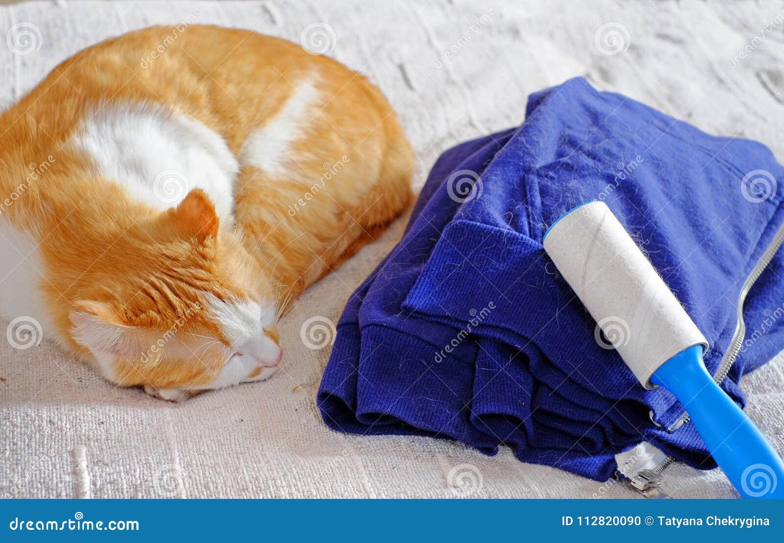 猫流洒,水兵动物` s头发和充分棉绒去膜剂