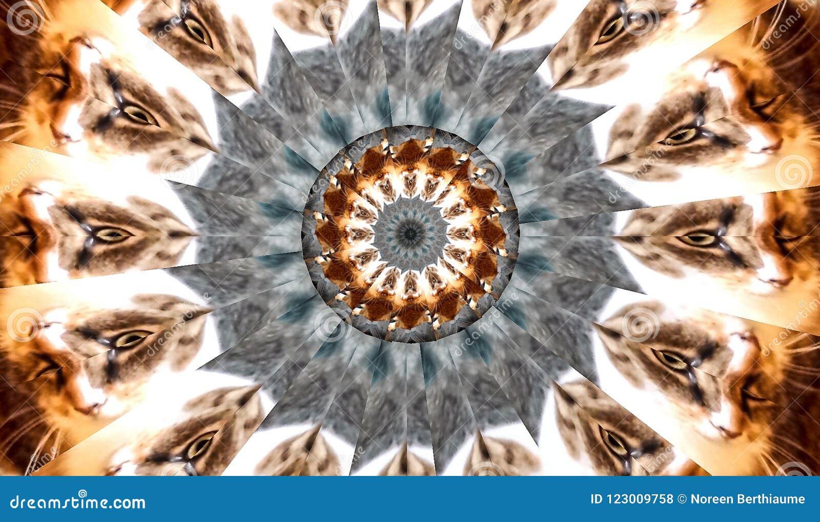猫眼横幅万花筒分数维
