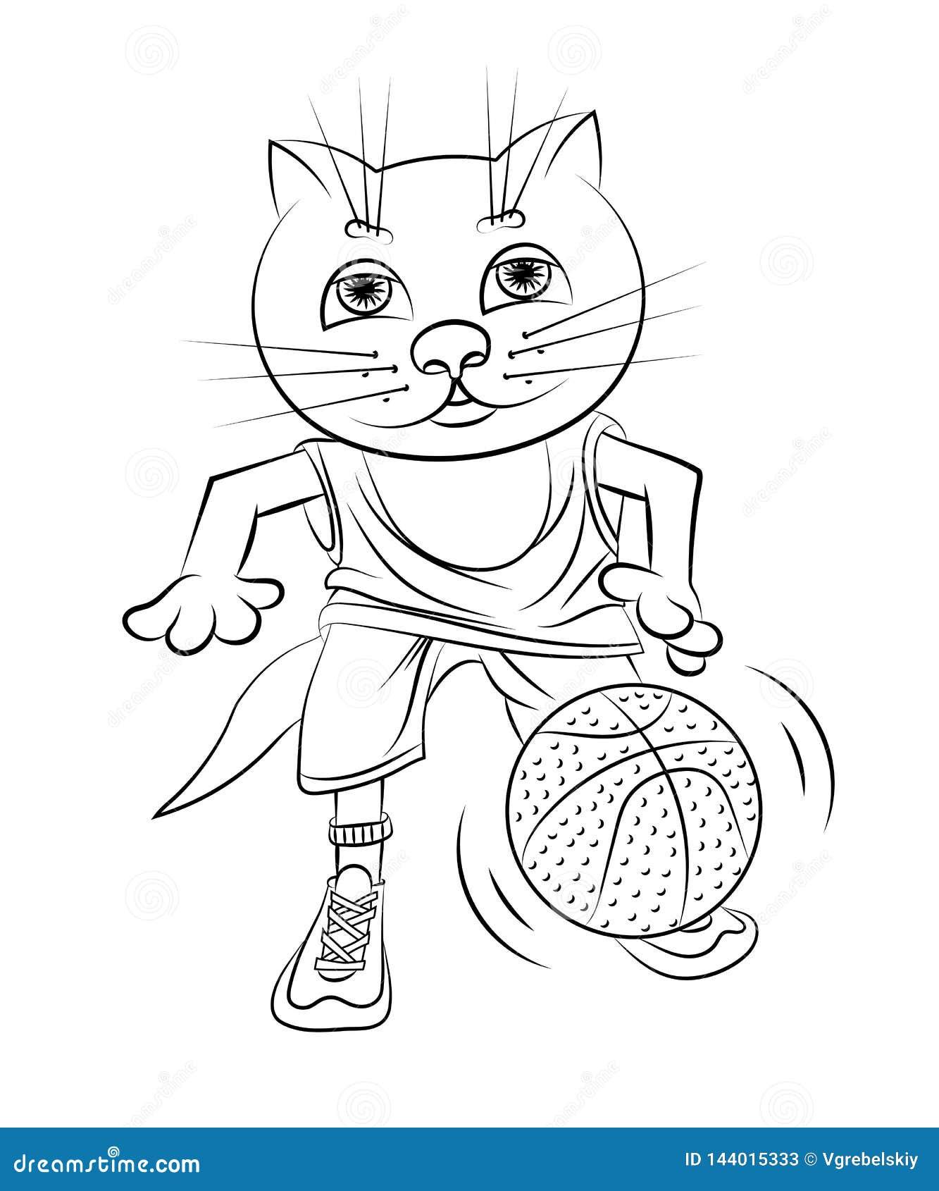 猫篮球运动员