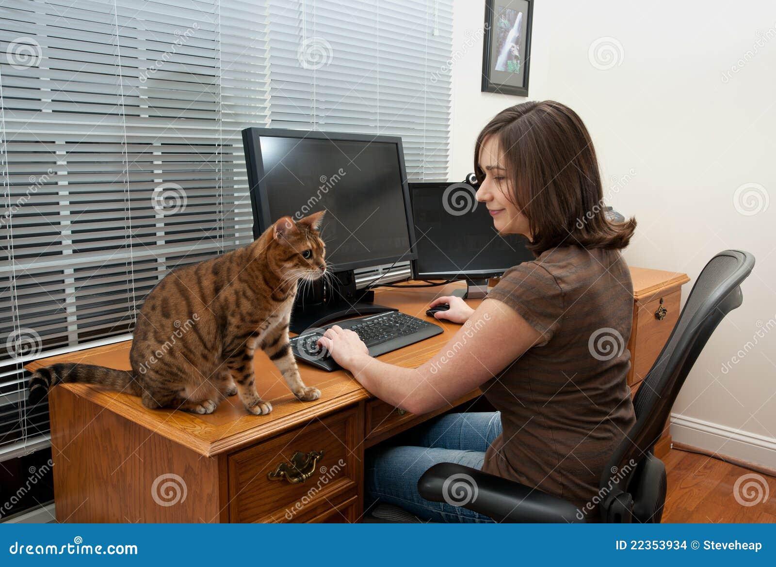 猫计算机服务台妇女