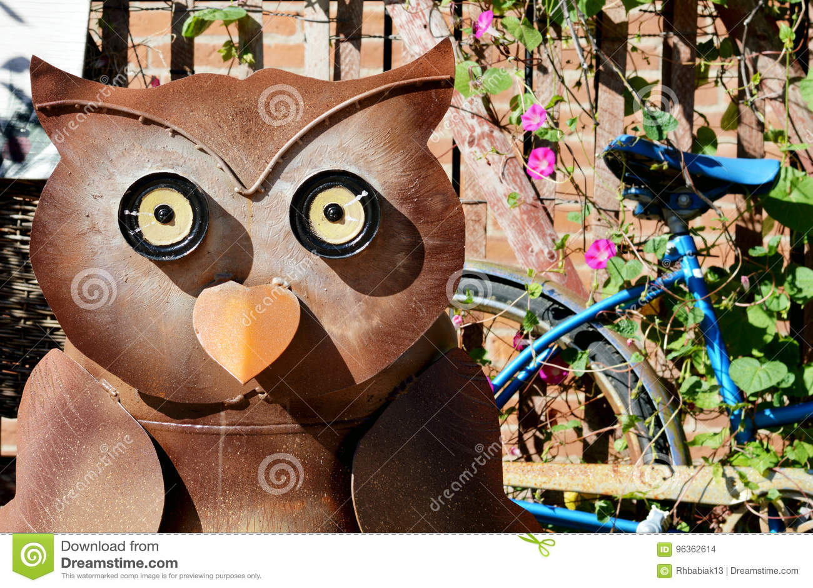 猫头鹰和蓝色自行车