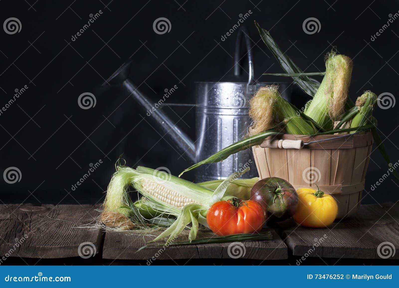 玉米和祖传遗物蕃茄
