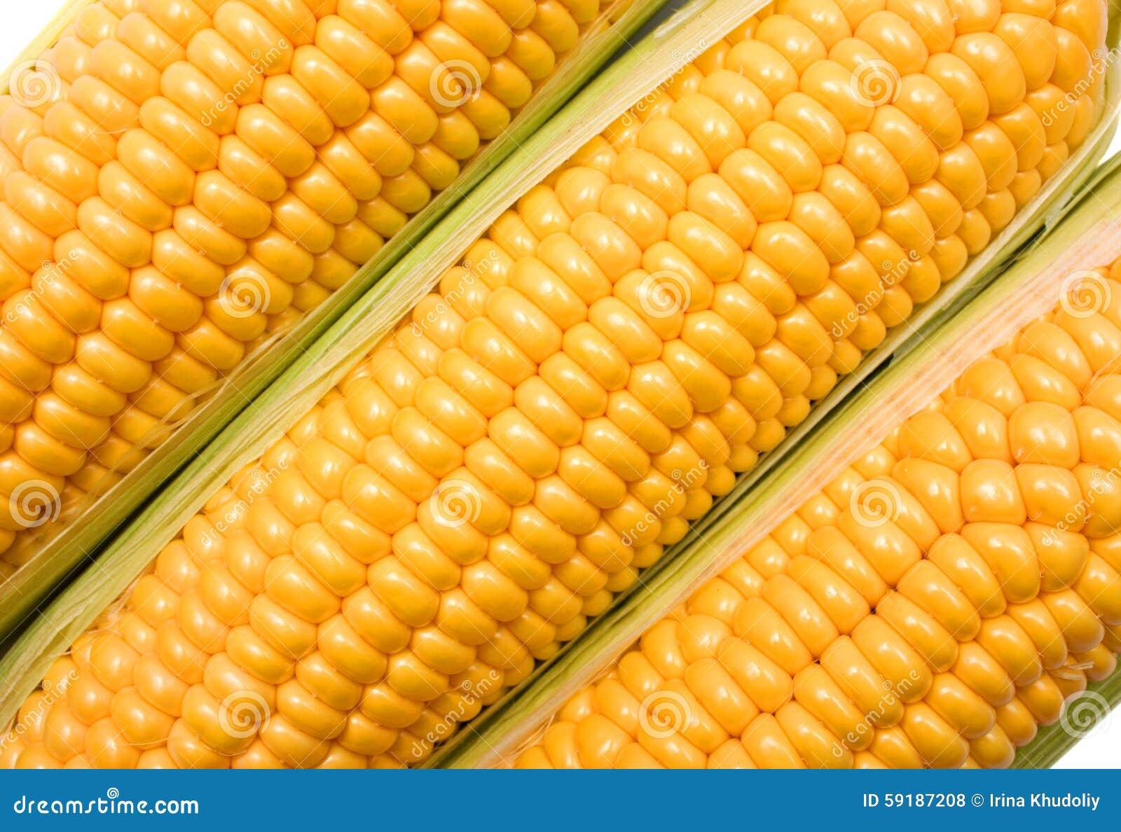 在白色背景隔绝的玉米穗.图片