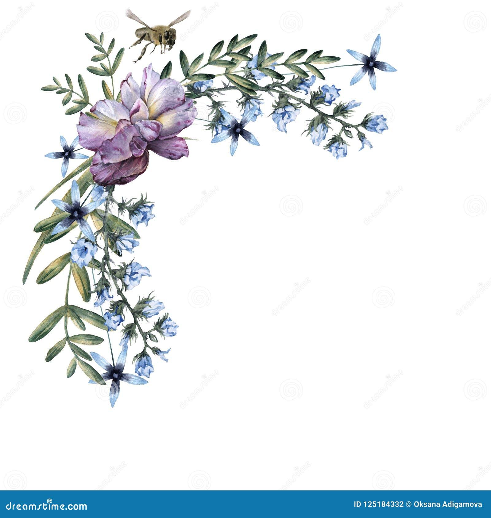 玫瑰的构成与野花和蜂的 背景查出的白色