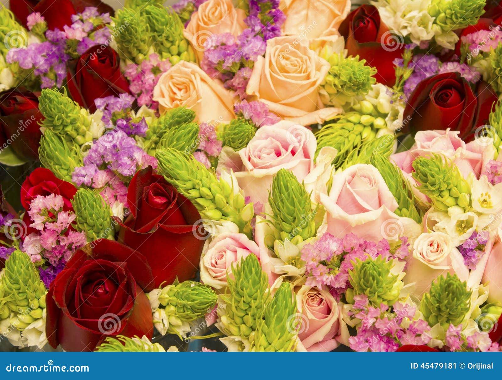 玫瑰花作为自然背景