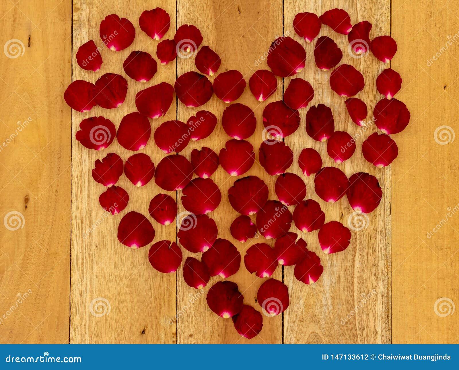 玫瑰花瓣在心形安排了