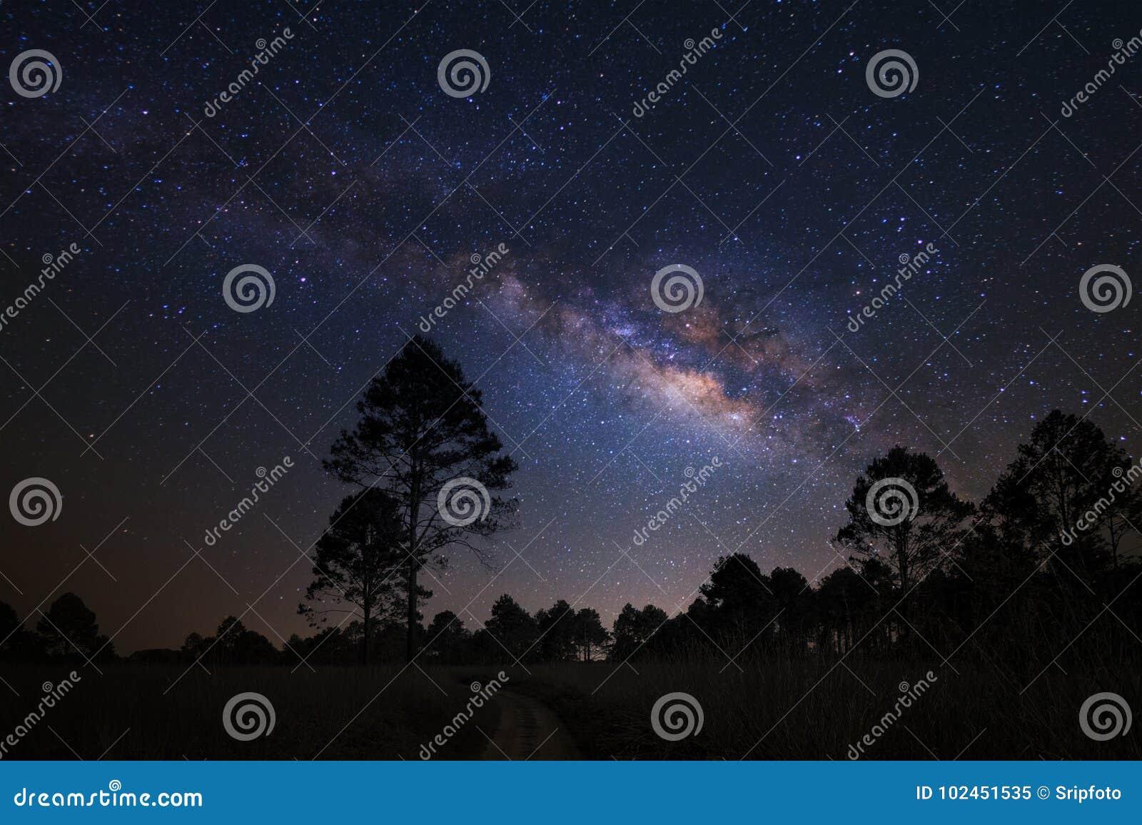 环境美化与银河星系、夜空与星和silhou