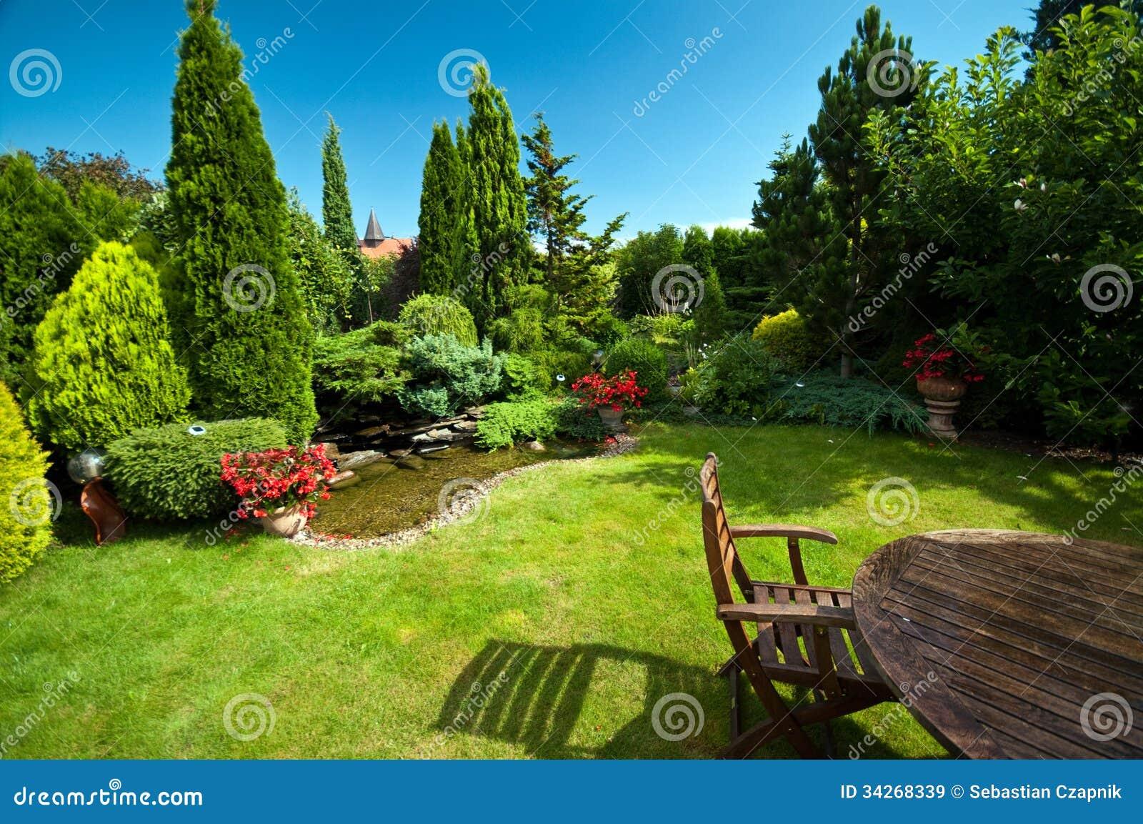 环境美化的庭院在夏天