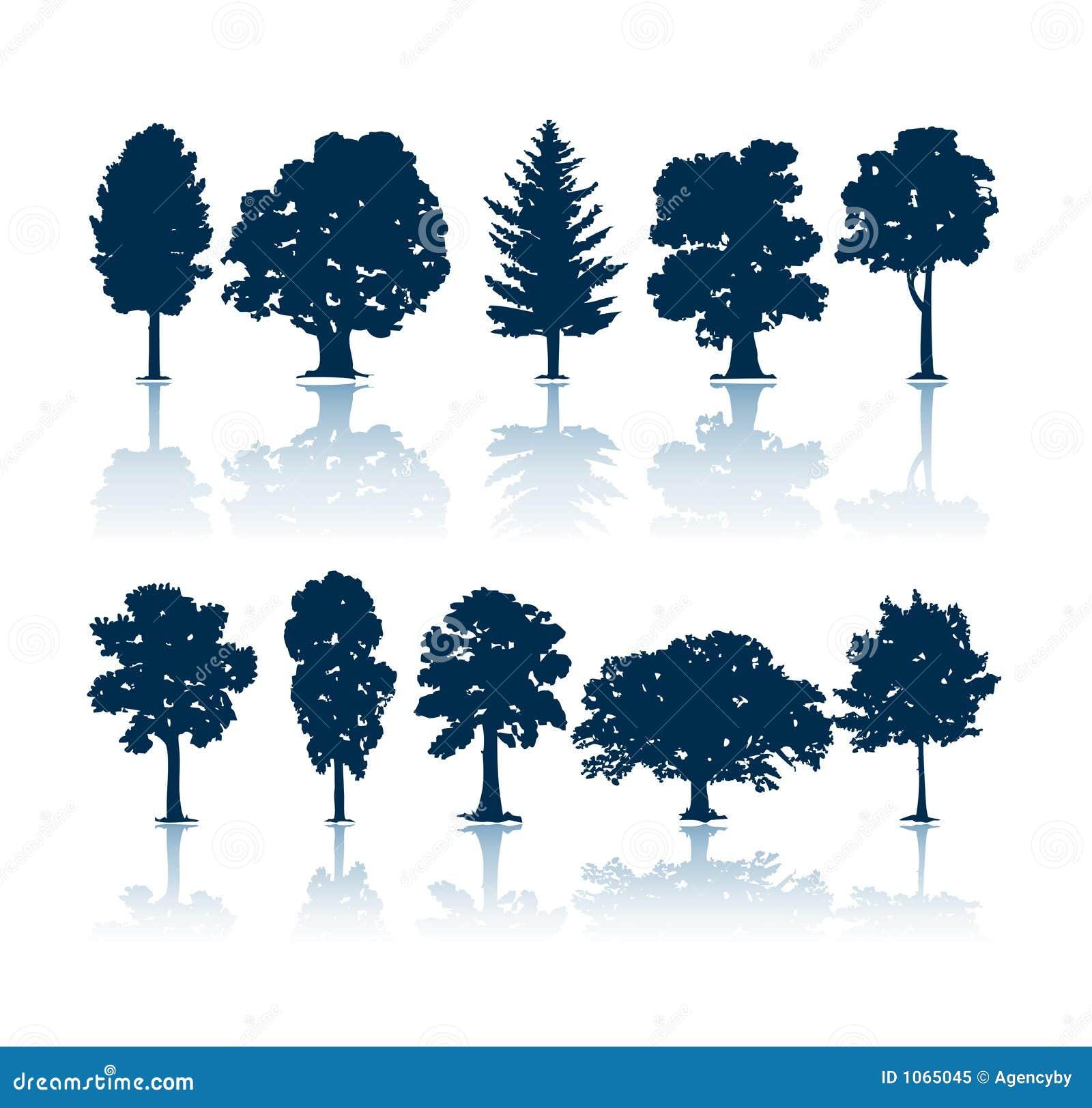 现出轮廓结构树