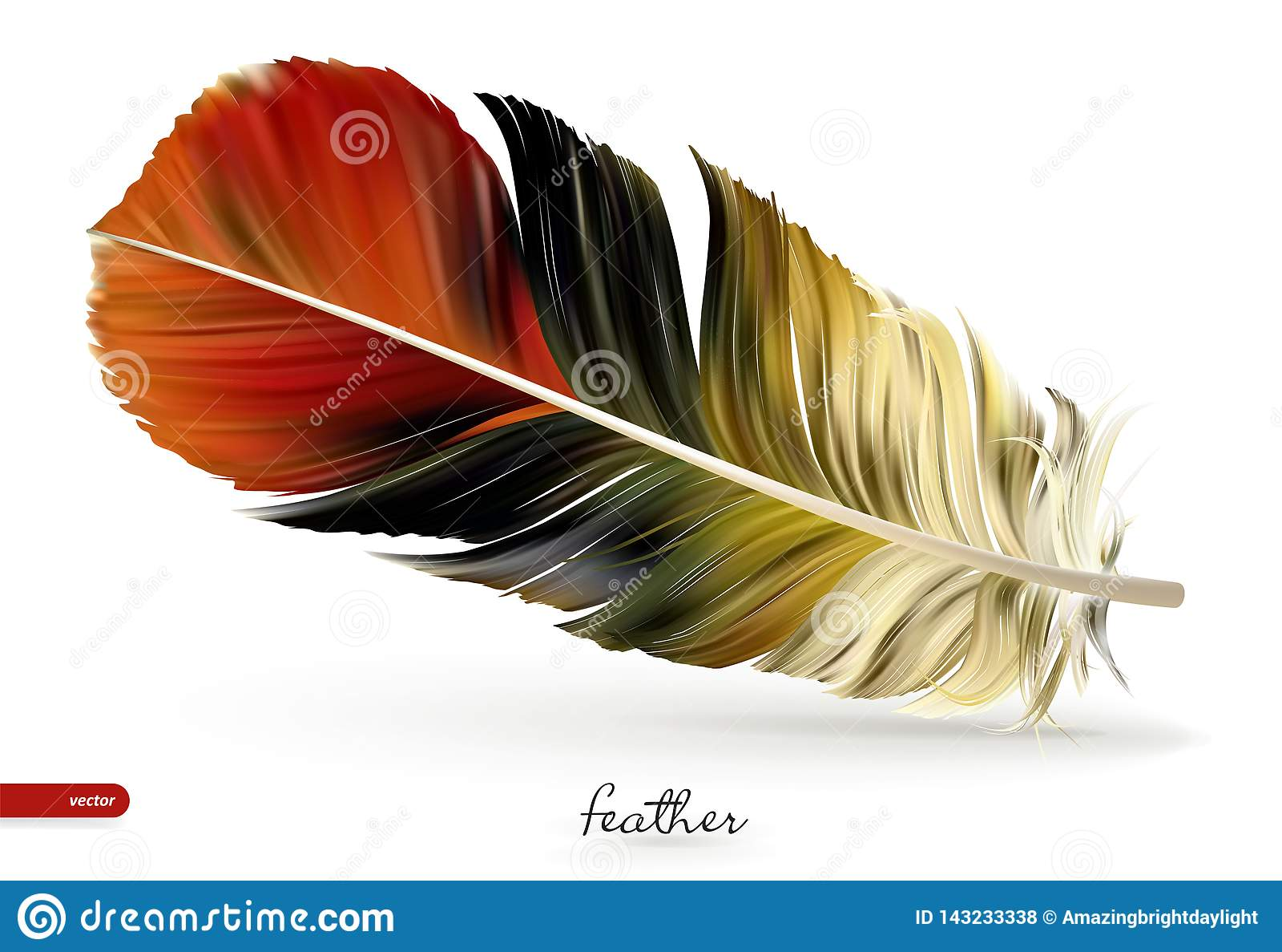 现实羽毛-传染媒介例证 背景查出的白色