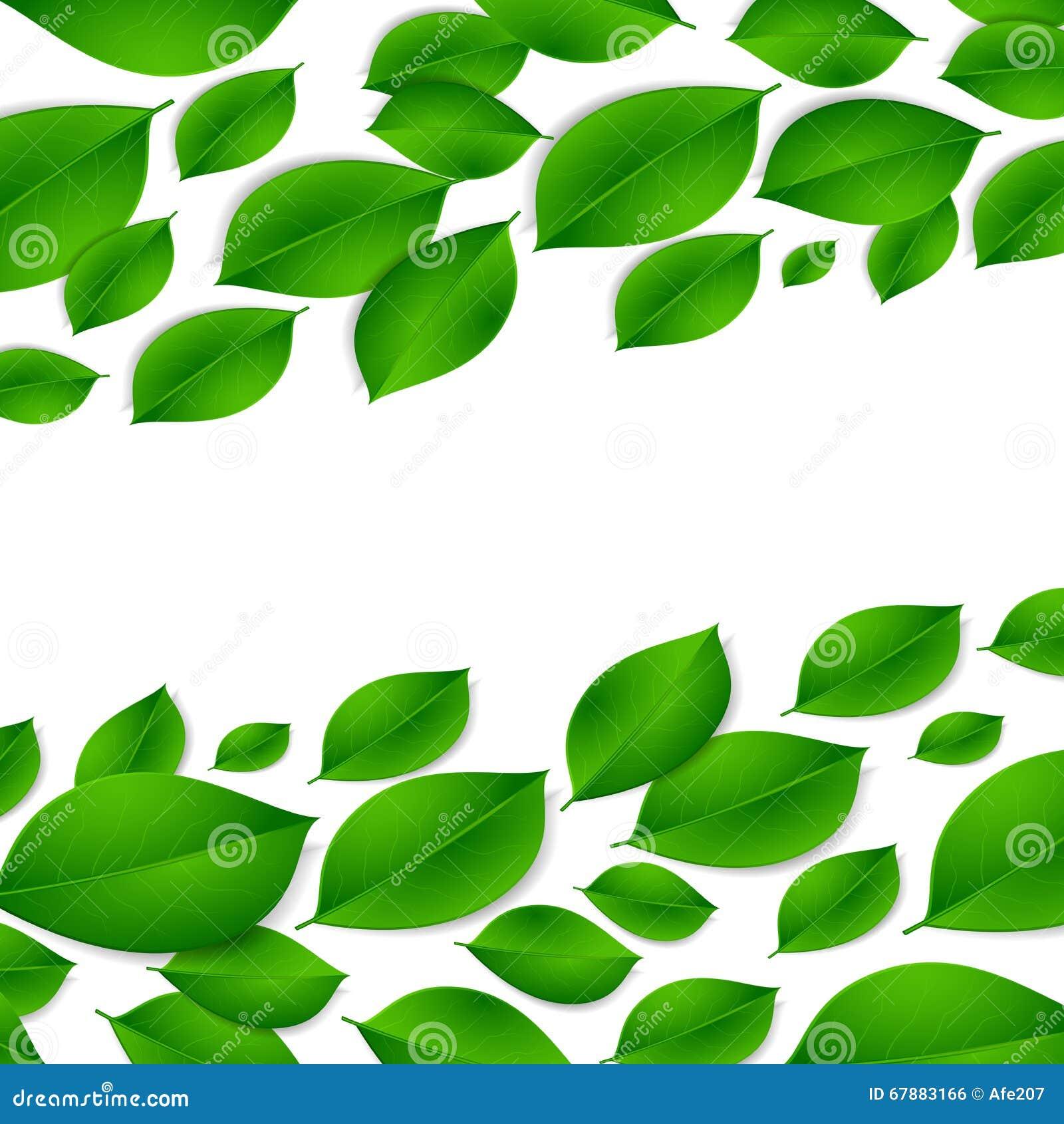 现实绿色在白色背景留下被隔绝的纹理