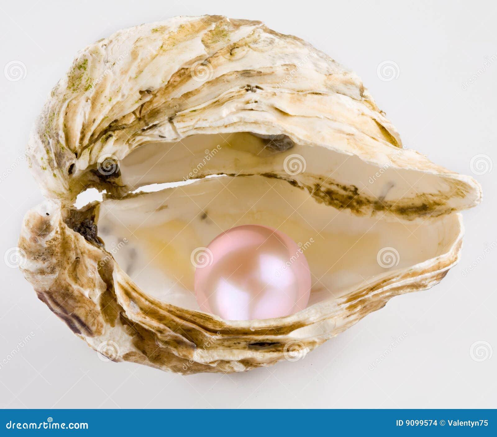 珍珠粉红色