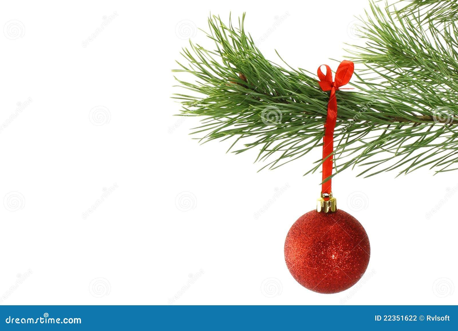 球分行圣诞节冷杉