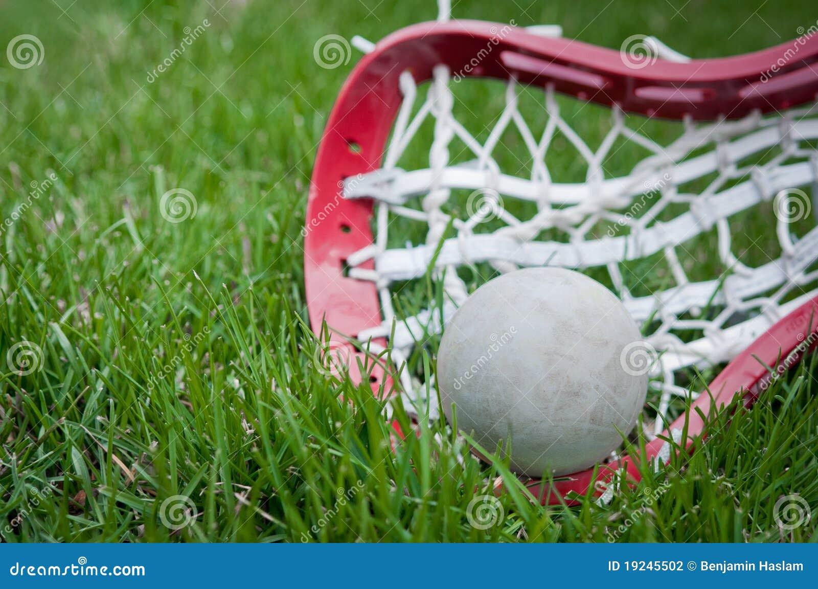 球女孩放牧灰色顶头曲棍网兜球
