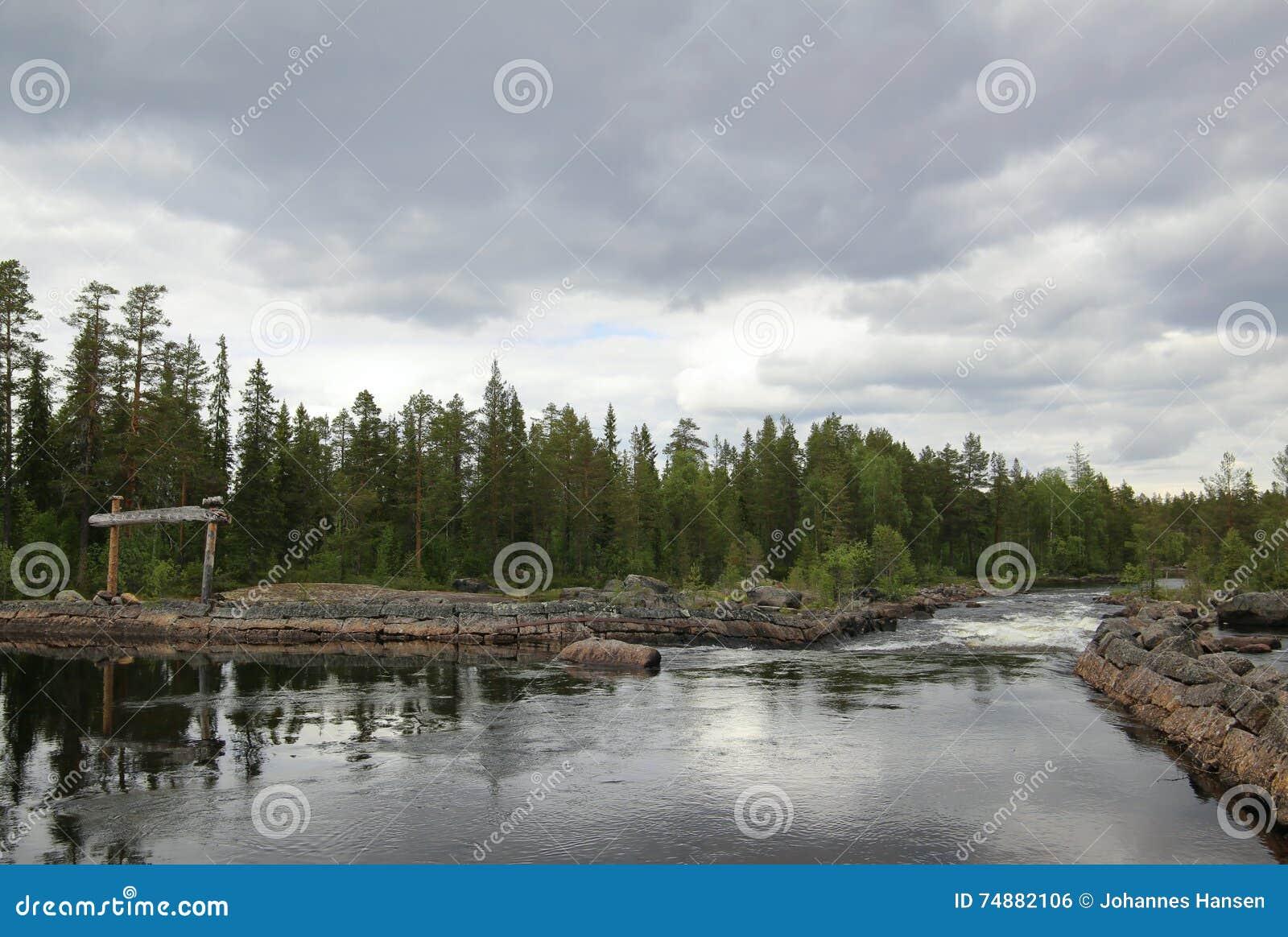 瑞典河在有木标志的Haelsingland