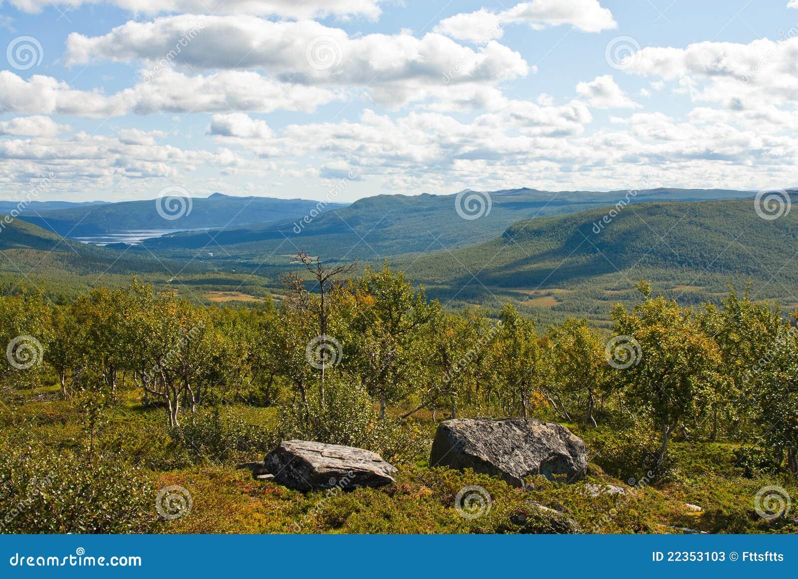 瑞典语的小山