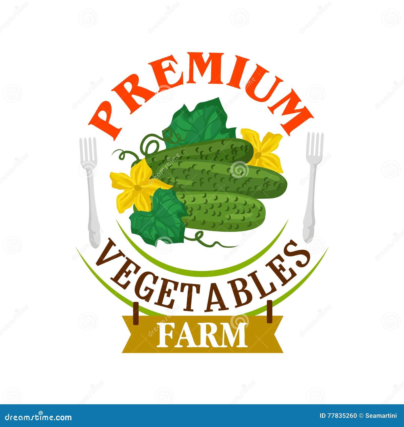 黄瓜种田新鲜 健康菜象征