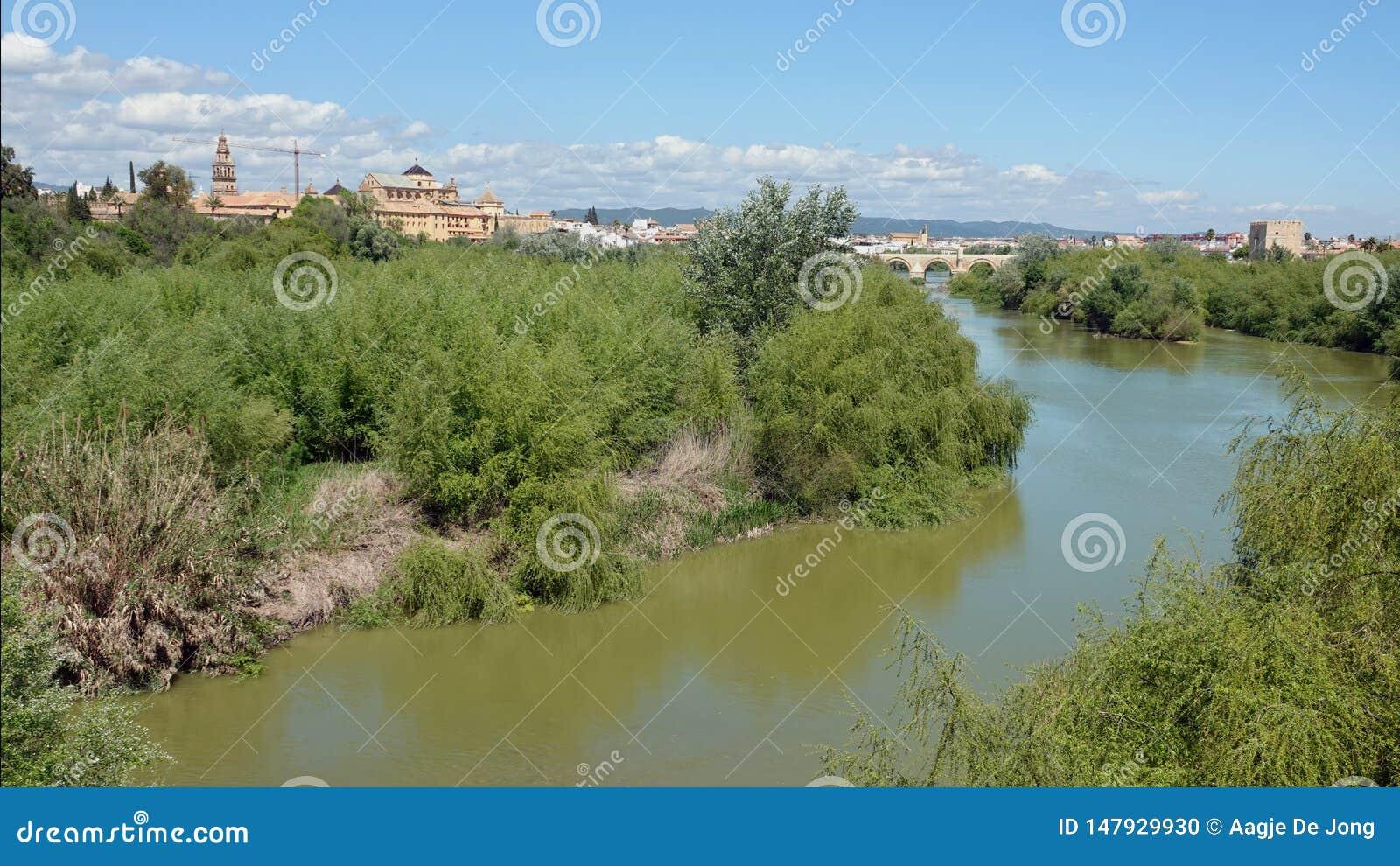瓜达尔基维尔河科多巴河和在西班牙