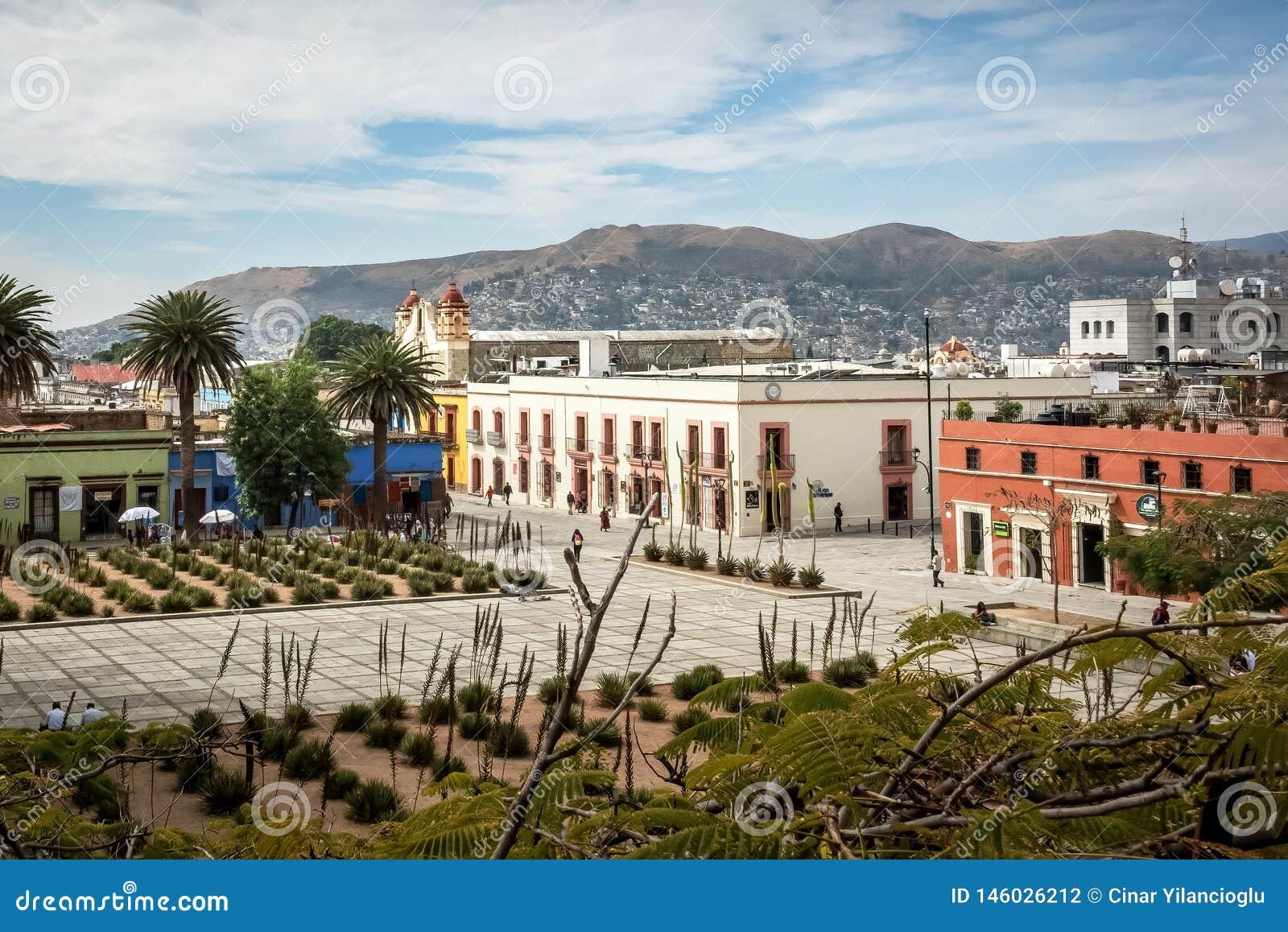瓦哈卡de JuA ¡ rez,瓦哈卡,墨西哥正方形的仙人掌庭院