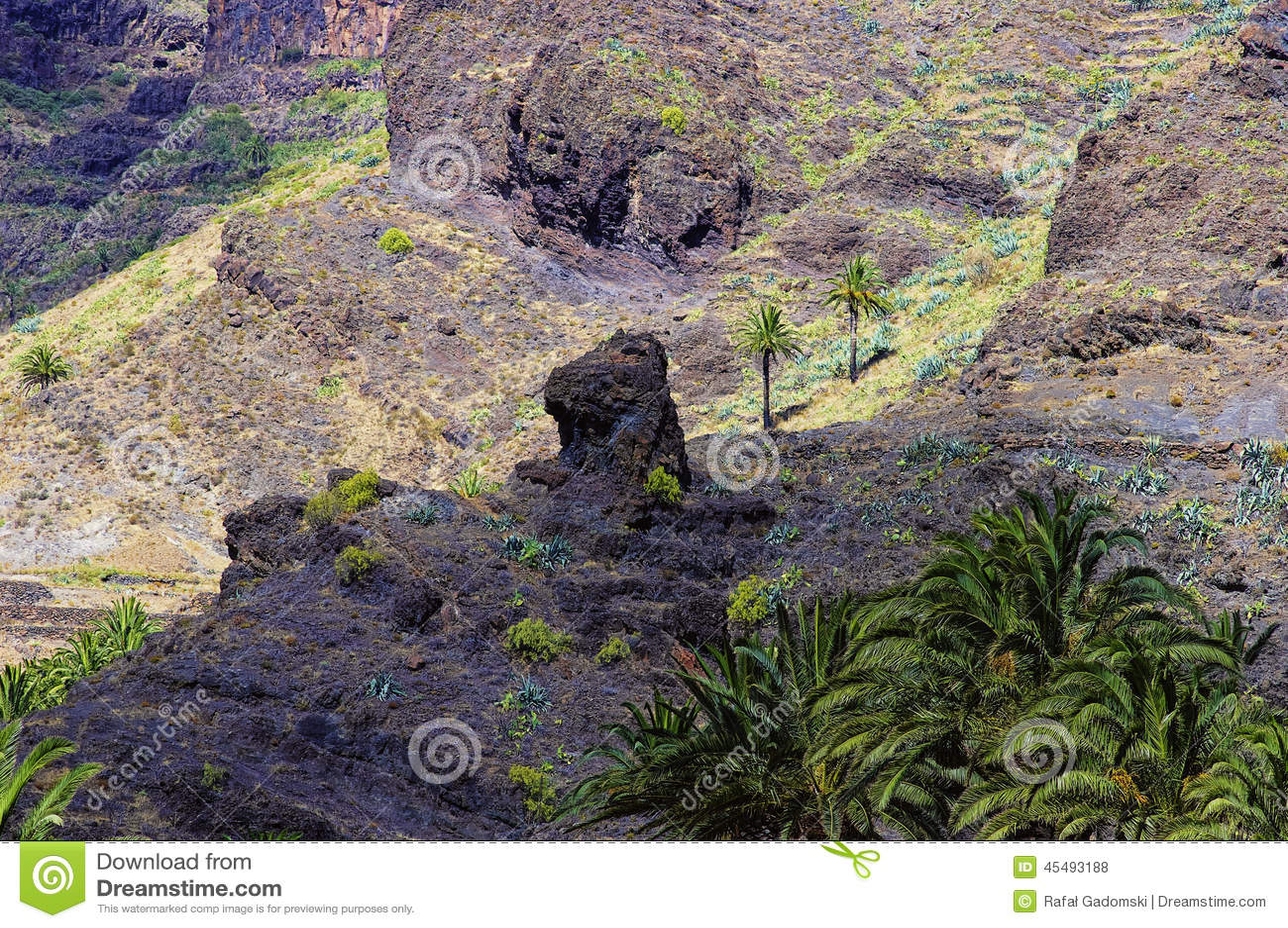 瓦尔Gran Rey,戈梅拉岛海岛