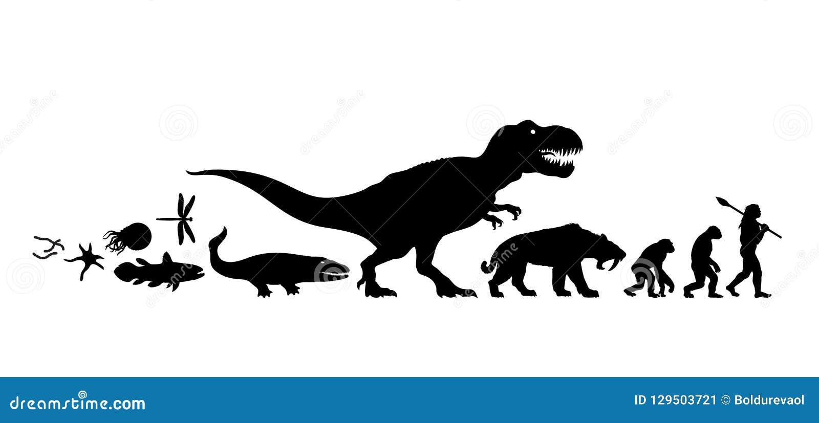 生活的历史地球上的 剪影 演变时间安排从原生动物到人 人的发展 查出的手拉